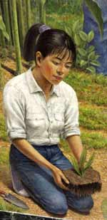 Detail - Woman kneeling outdoors, holding plant