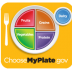 fork, plate - four sections: red-fruits, orange-grains, green-vegetables, purple-protein, blue circle-dairy